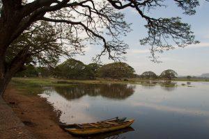 A view over Tissa Lake near Tissamaharama, Sri Lanka